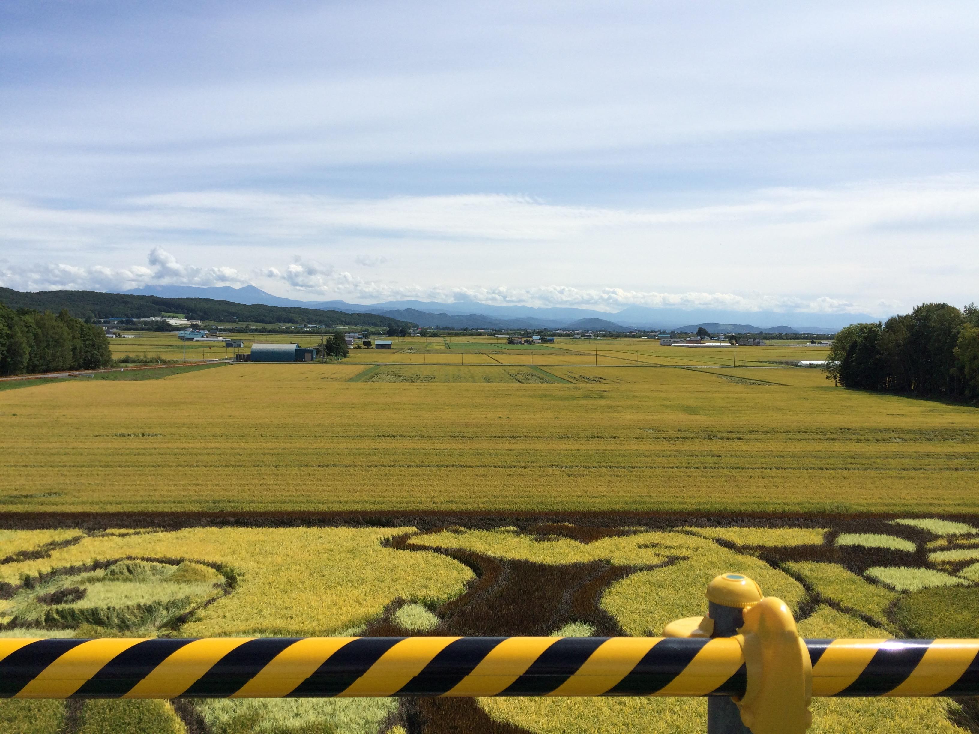 旭川周辺からの風景