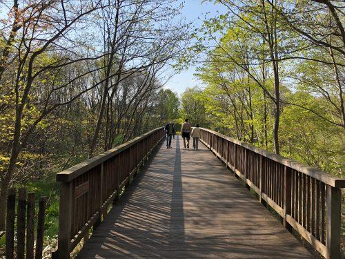 平岡公園の橋