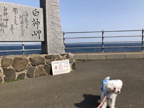 北海道最南端で犬と記念撮影