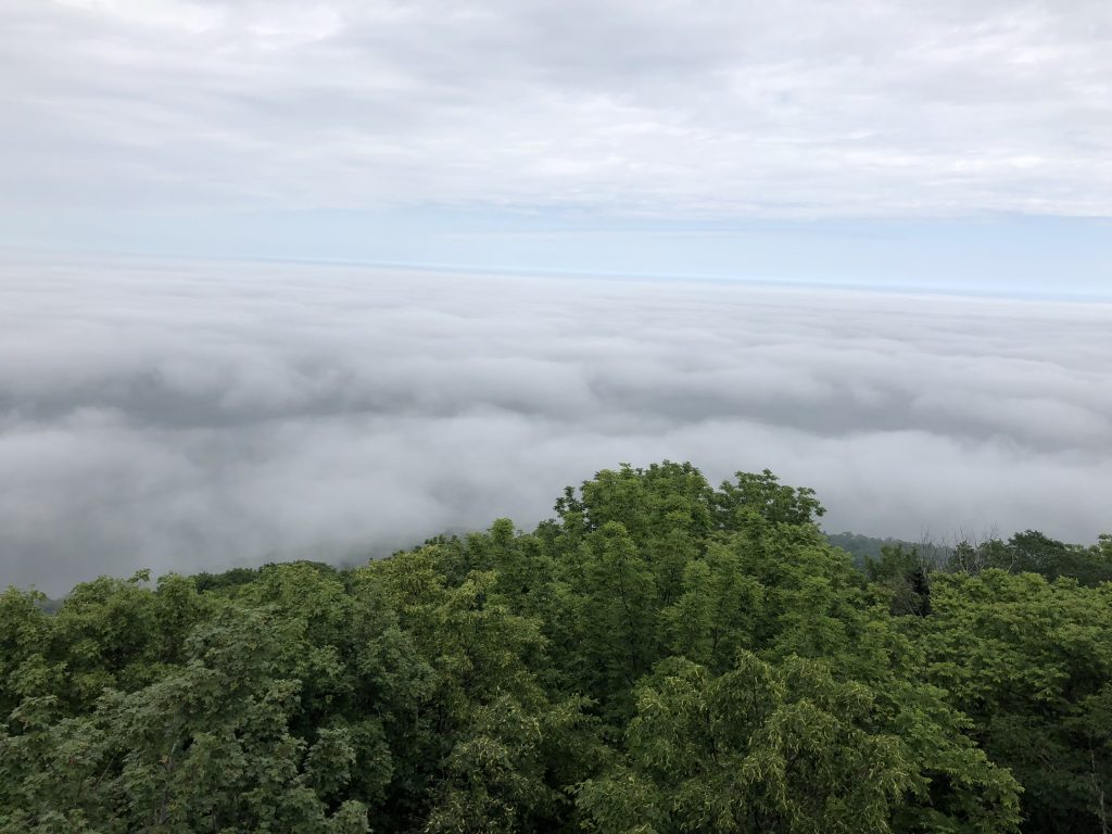 サロマ湖展望台から見た雲海2