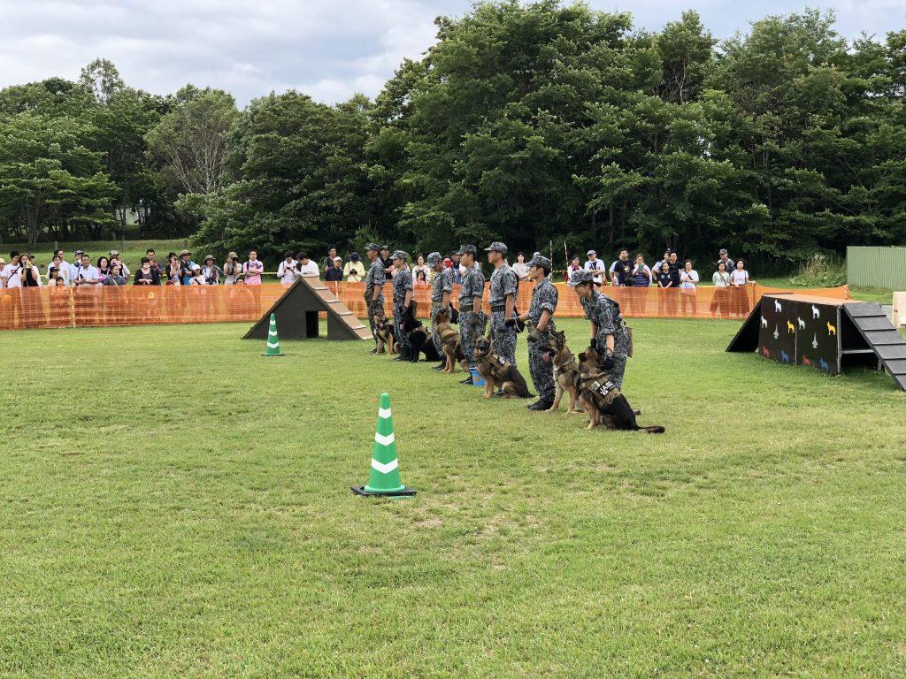 警備犬訓練展示
